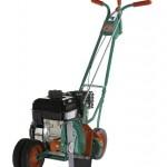 Power Trim 200-4 Power Edger